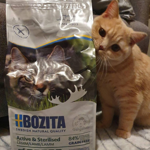 Bozita Grainfree Active & Sterilised